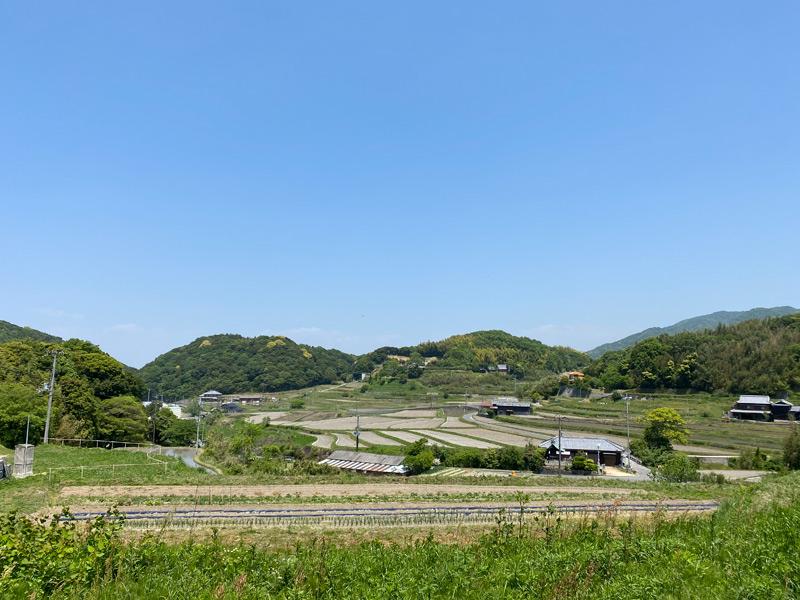 5月に入り、淡路島も汗ばむ陽気と新緑の季節がやってきました。
