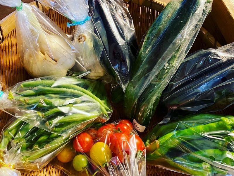淡では朝採り野菜も販売中です